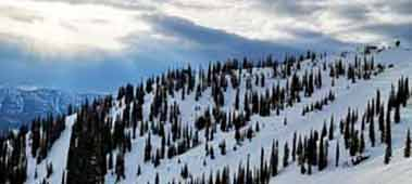 fernie-alpine-shred-index-thumbnail